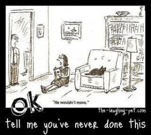 Katten som vägrar flytta sig ur fåtöljen - teckning från Facebook