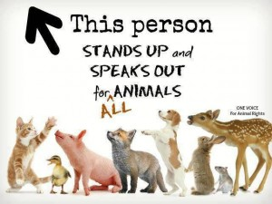 This person stands up for all animals