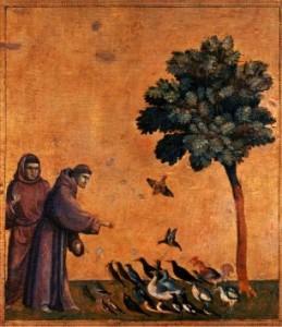 Franciskus äldre bild