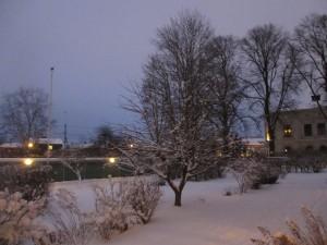 Snö 1