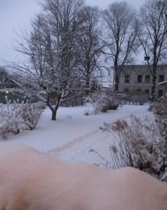 Snö 2