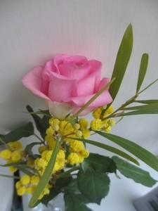 Ros och mimosa