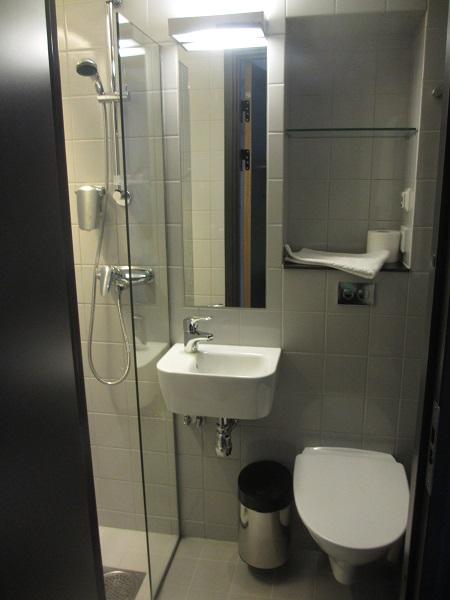 Liten toalett med dusch