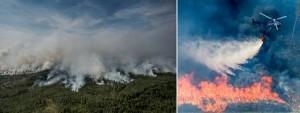 Branden i Salaskogarna Aftonbladet
