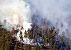 Skogsbranden i Sala DN