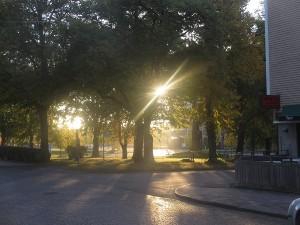 Stureparken 140929
