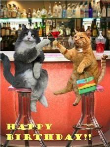 Happy Birthday SKÅL säger katterna