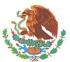 Mexikos örn