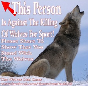 Against killing of wolves