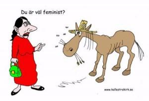 Satir feminism