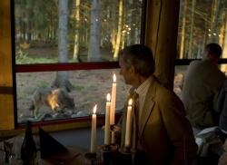 Vargar i Nordens Ark