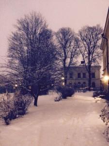 Vinter igen 31 jan 2015