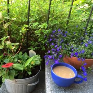 Frukost 11 juni 2015
