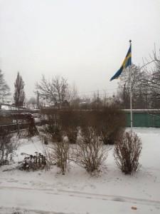 1 januari 2016 flaggan uppe