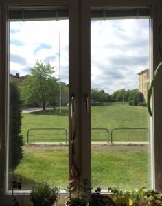 Fönster på sommar i Götet